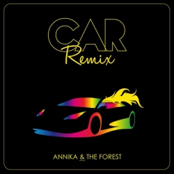 Annika and The Forest - Car (Maxime Delpierre Remix) : masterisé par Chab